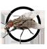 fliege-icon